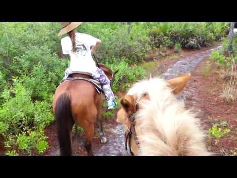 Horseback riding Ace of Hearts Ranch 006