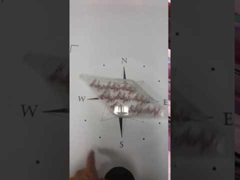 포디믹스 분자모형 나침반