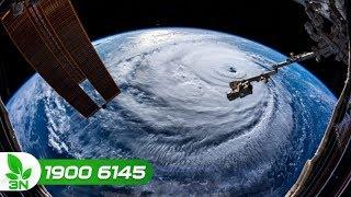 Nông nghiệp | Tin mới nhất về siêu bão Mangkhut