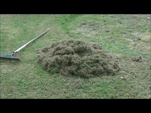 Rasen Vertikutieren mit der Hand// Einfach und richtig!