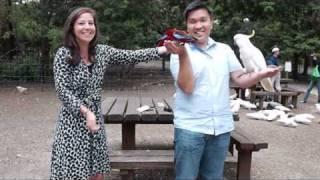 Sherbrooke Australia  city photos : Bird Feeding at Grants on Sherbrooke