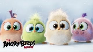 The Angry Birds Movie - Season's Greetings from the Hatchlings! - YouTube