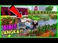 RAHASIA BIBIT TANAMAN LANGKA DITEMUKAN DI DESA INI (Minecraft)