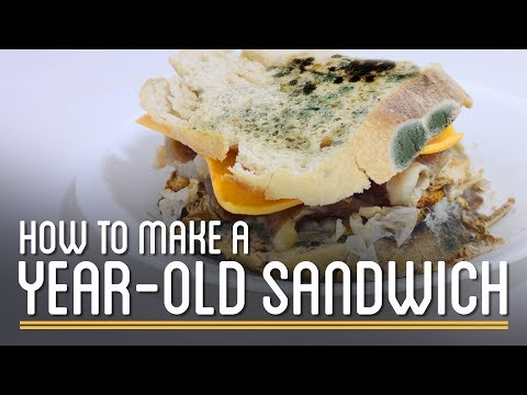 How to Make a YearOld Edible Sandwich