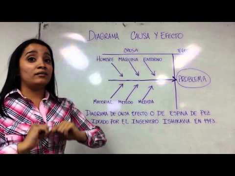 Video Diagrama de causa y efecto download in MP3, 3GP, MP4, WEBM, AVI, FLV January 2017
