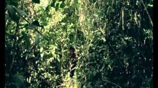 En landsby langt, langt inde i Panamas regnskov. Et stolt, oprindeligt folk, der kalder sig Emberá. En krigsmalet fløjtespiller, som...