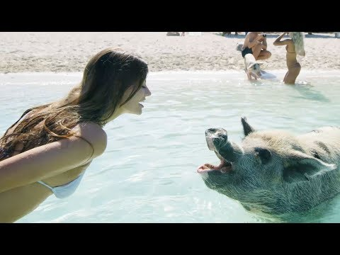 Summer Vacation!!   Hannah Stocking & MyLifeAsEva