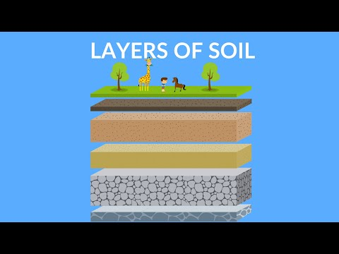 Layers of Soil  | Soil Formation | Video for Kids