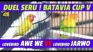 Video BATAVIA CUP V 2018 : DUEL SERU !  LOVEBIRD JARWO & AWE WE, MENGHIBUR RIBUAN PESERTA MP3, 3GP, MP4, WEBM, AVI, FLV Desember 2018