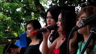 BERDENDANG Voc ALL ARTIST Om Dwipangga Live Purworejo