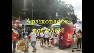 1º Encontro dos Apaixonados por Cães de João Monlevade