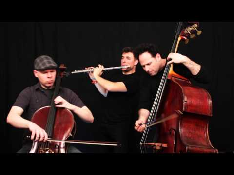 FINALE - William Tell Overture - PROJECT Trio