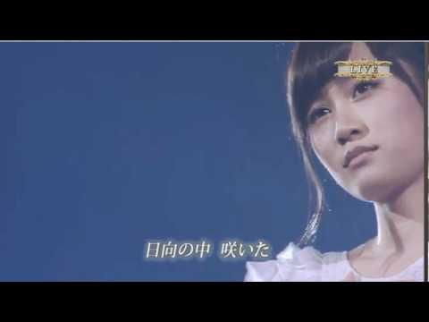 「[AKB48]前田敦子「AKB48卒業」宣言での観客の絶叫。」のイメージ
