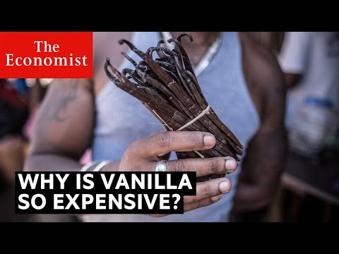 Why is vanilla so expensive?   The Economist