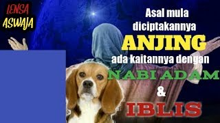 Video Asal mula diciptakannya anjing ada kaitannya dengan Nabi Adam dan Iblis MP3, 3GP, MP4, WEBM, AVI, FLV Desember 2018