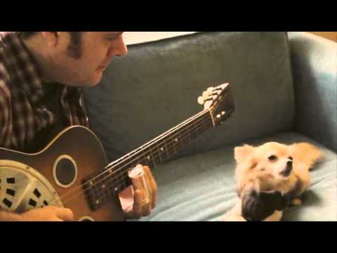 Chihuahua singing the blues to slide guitar