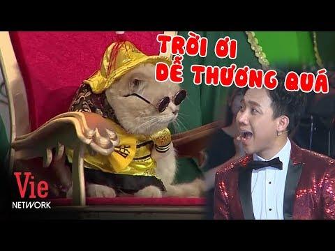 """Trấn Thành phát cuồng vì """"Hoàng Thượng"""" Mèo đi thi Người Bí Ẩn Tập 1 Mùa 6 2019 - Thời lượng: 21:42."""