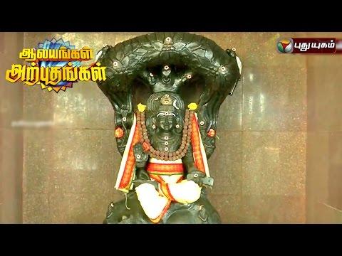 Dhanvanthri-Temple-Wallajapet-Aalayangal-Arputhangal-21-06-2016-Puthuyugam-TV