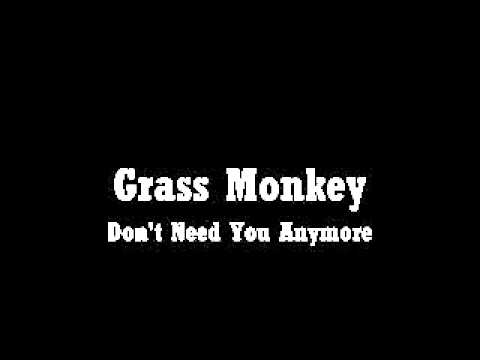 Grass Monkey  - Don't Need You Anymore (Roanoke, Virginia)