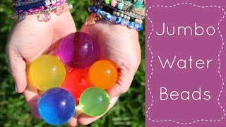 This is a sensory play activity for preschool.  For more preschool learning activities and preschool games please visit http://www.childcareland.com.Jumbo Water Ballz Polymer BallsRemember to use close supervision especially when working with toddlers and preschoolers as this product is not recommended for children under five.Jumbo Water Beads - http://ebay.to/1S3bzO7Also great for child care, kindergarten, homeschool. Don't forget to subscribe to my youtube channel and sign up for my free newsletter at http://mad.ly/signups/113426/join.Please like ... comment ... and share!!childcareland.com - http://www.childcareland.comearlychildhoodprintables.com - http://www.earlychildhoodprintables.comConnect With Me:Twitter - http://www.twitter.com/childcarelandInstagram - http://www.instagram.com/shelleylovettPinterest - http://www.pinterest.com/childcareland