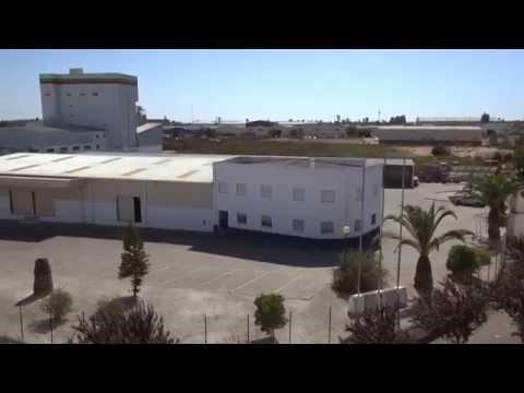 CORREDOR AZUL: VENDAS NOVAS UMA CIDADE EM CRESCIMENTO