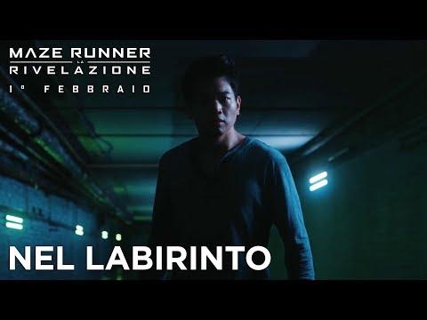 Maze Runner: La Rivelazione   Nel labirinto CLIP HD   20th Century Fox 2017