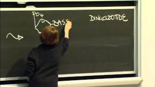 Macromolecules: Lipids, Carbohydrates, Nucleic Acid, Excerpt 2 | MIT 7.01SC Fundamentals Of Biology