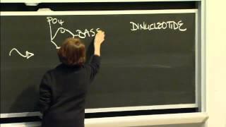 Macromolecules: Lipids, Carbohydrates, Nucleic Acid, Excerpt 2 | MIT 7.01SC Fundamentals Of Biology