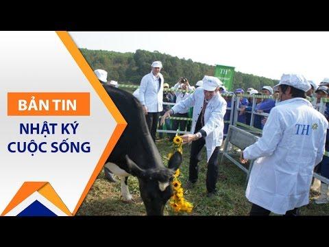 Thăm trang trại bò sữa hữu cơ đầu tiên | VTC - Thời lượng: 81 giây.