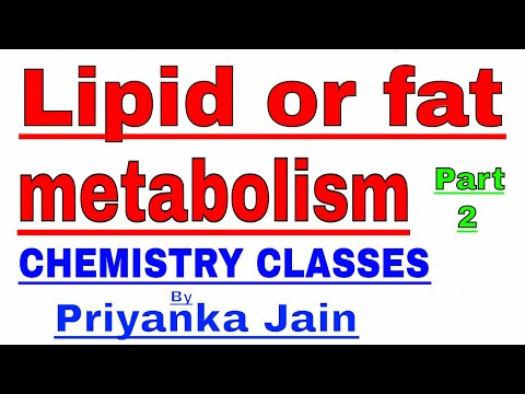 Lipid or fat metabolism part-2 : ketogenesis and fat synthesis in body