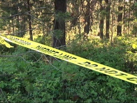 Grizzly Bear Kills Mountain Biker in Montana (видео)