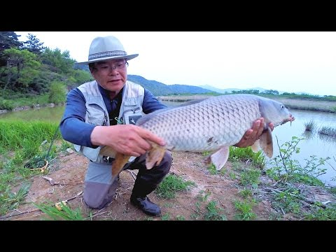 Fly fishing for Carp, - Episode 8 ( 잉어플라이낚시 ) - Thời lượng: 15 phút.