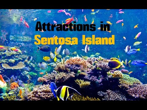 Top 14. Best Tourist Attractions in Sentosa Island - Travel Singapore