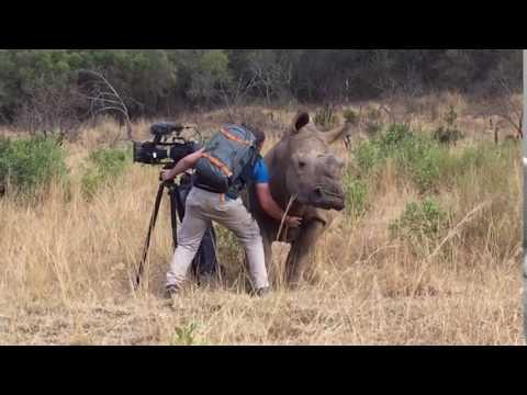 這頭超級巨大的犀牛在拍攝現場突然走像攝影師,然後竟然提出這一個要求…