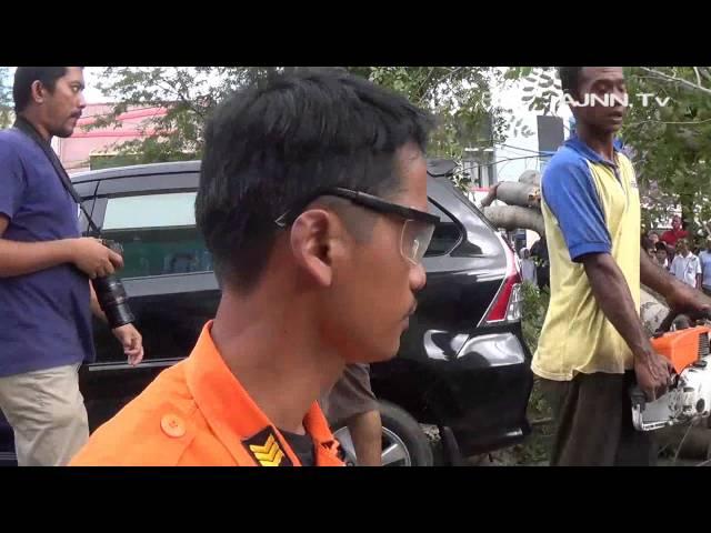 Dua Unit Mobil Tertimpa Pohon Tumbang