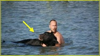 Wskoczył do wody by ratować tonącego niedźwiedzia – ale nie miał pojęcia, jak zareaguje zwierzę