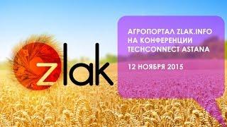 olk-HUKfQN0