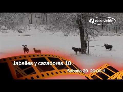 Jabalíes y cazadores 10