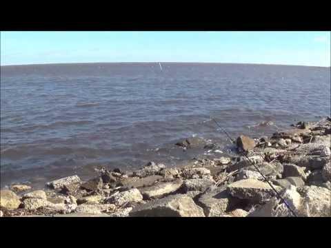 Lake Pontchartrain Redfish Limit – Feb 2014