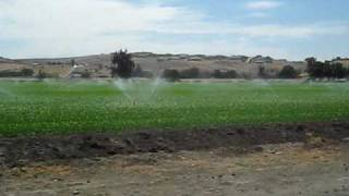 Hollister (CA) United States  city photos : Los Ranchos de Hollister California USA Videos Commerciales Jack D Deal