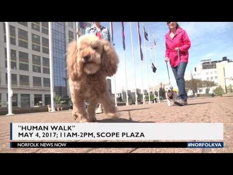 Meet Adoptable Pets on the Plaza May 4th - Human Walk