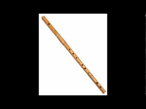313 - The Flute Concerto No. 1 in G major (K. 313) was written in 1778 by Wolfgang Amadeus Mozart. Commissioned by the Dutch flautist Ferdinand De Jean in 1777, Mo...