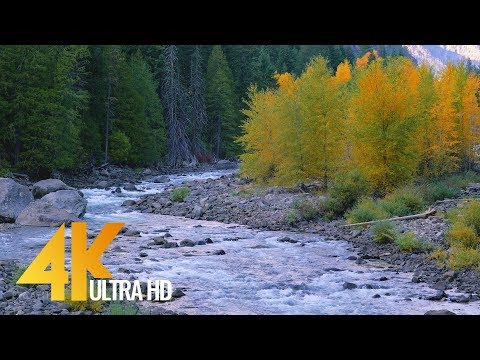 4K UHD Scenic Mountain River - Relaxation with Autumn River Sounds - 1 HR Video (видео)