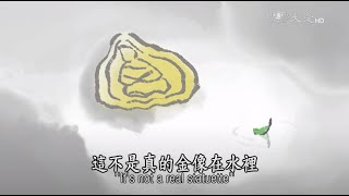 Video 【證嚴法師說故事】20150920 - 水中金像 MP3, 3GP, MP4, WEBM, AVI, FLV Juli 2018