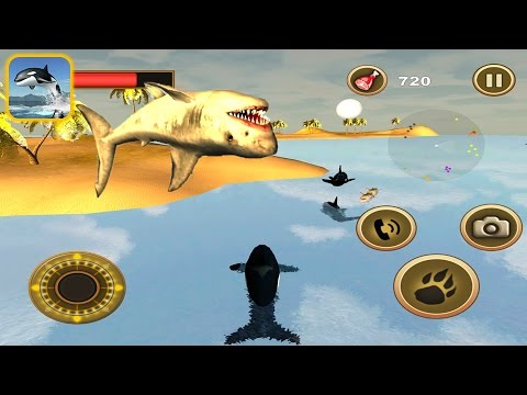 Orca Survival Simulator: Killer Whale Vs Sharks - IOS Gameplay |Newbie Gaming
