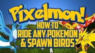 Pixelmon Tutorial - How to Ride Any Pokemon&Spawn the Legendary Birds