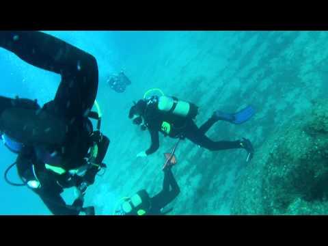 Sortida de la secció de la secció de submarinisme del Club Nàutic Garraf