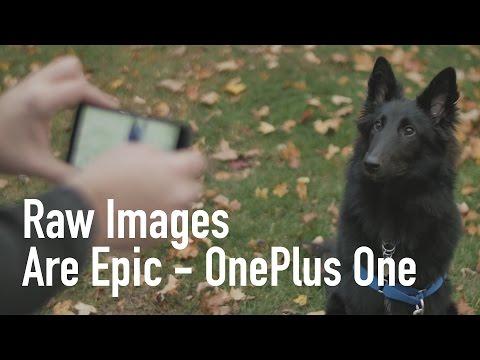 Raw - Discuss: https://teksyndicate.com/videos/oneplus-one-raw-image-test-best-phone-photography-yet Music: http://bit.ly/Trk2ik, Merch: http://epicpants.com Game Deals: https://teksyndicate.com/gamedeal.