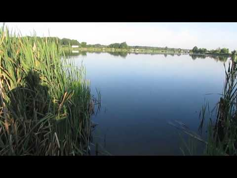 ловить рыбу в жару