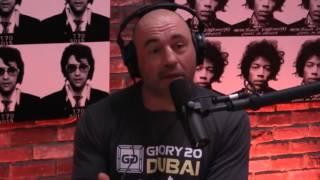 Video Joe Rogan on The Young Turk's dishonesty MP3, 3GP, MP4, WEBM, AVI, FLV Januari 2019